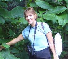 Cheryl Harner