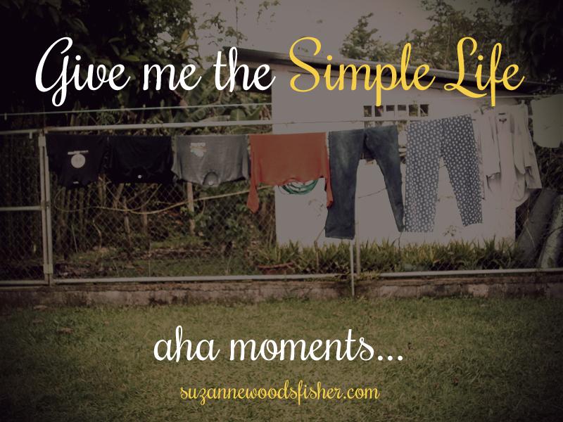 swf-simplelife-costarica