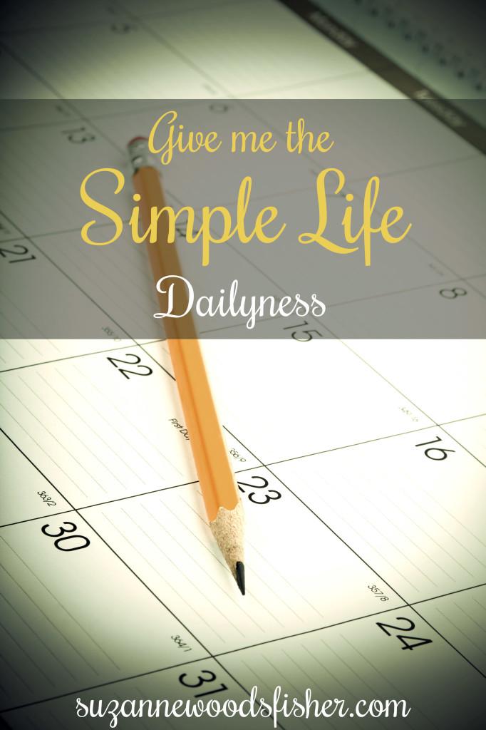 swf-dailyness