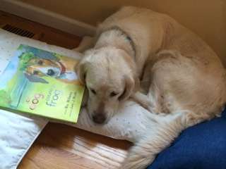 Even Tess loves to read in the book corner.