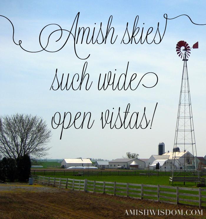 AW-amishskies
