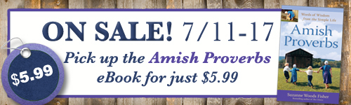 amishproverbs-banner-5.99