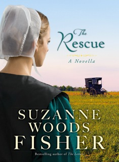 The Rescue, an Inn at Eagle Hill Novella