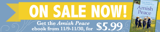 amishpeacesale-banner-november