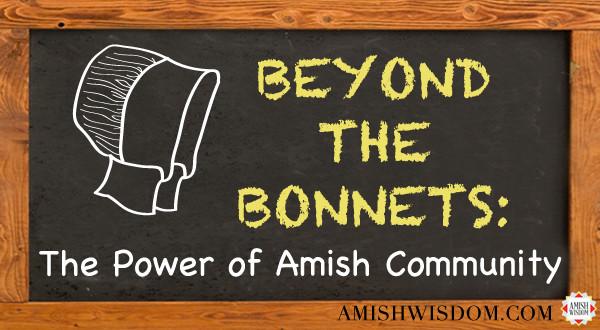 aw-bb-powerofamishcommunity-600x330