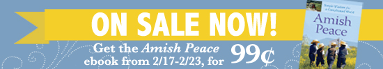 amishpeacesale-banner-feb