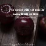 penn dutch proverb - apple