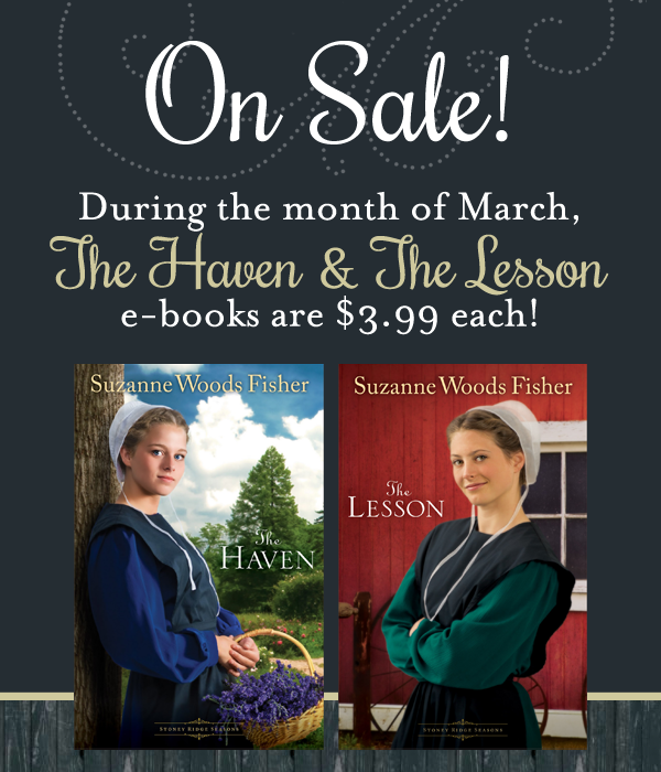 swf-haven and lesson sale