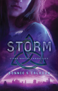 storm-book-cover